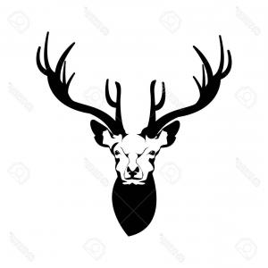 300x300 Vector Illustration Whitetail Deer Head Arenawp