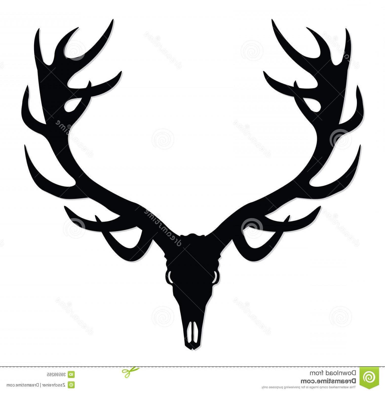 1560x1593 Whitetail Deer Antlers Vector Geekchicpro