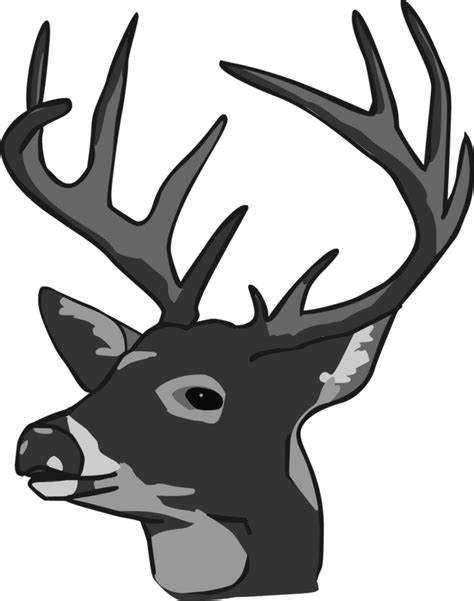 474x601 Whitetail Deer Head Vector. Whitetail Deer Head Vector Clipart