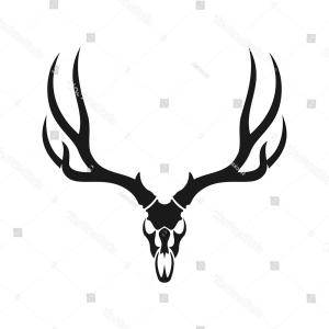 300x300 Whitetail Deer Skull And Antlers Gm Lazttweet