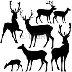 236x236 Reindeer Heads Clip Art Pages To Print Illustration Of Whitetail