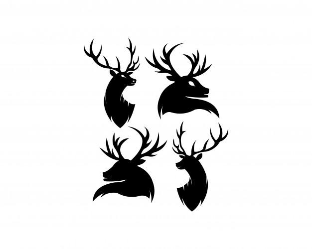 626x500 Deer Vectors, Photos And Psd Files Free Download