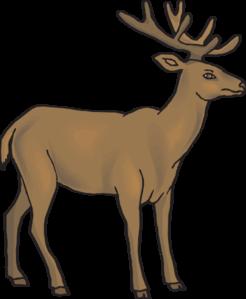 246x299 Deer Vector