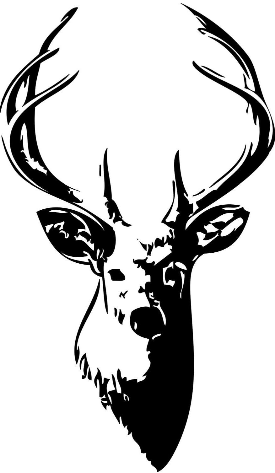 876x1507 Top Best Free Resolution Whitetail Deer Head Image Photos
