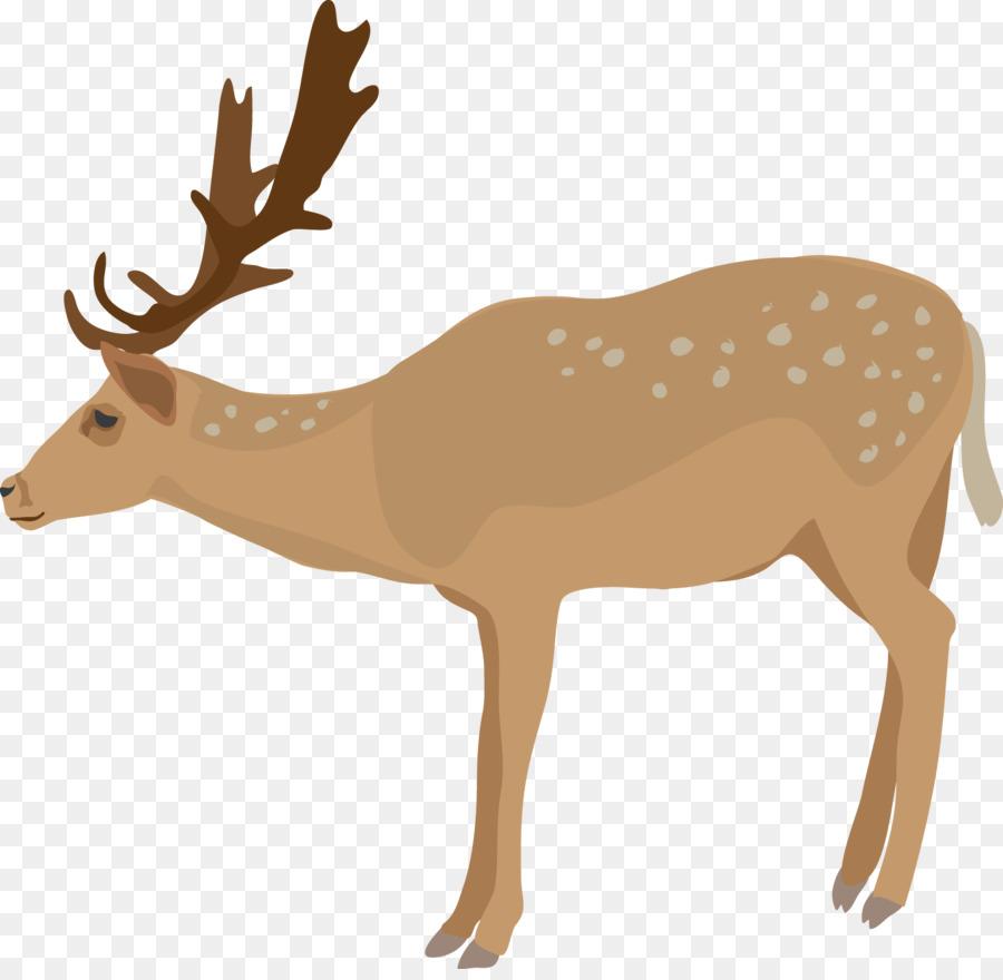 900x880 White Tailed Deer Clip Art