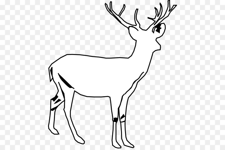 900x600 White Tailed Deer Moose Seneca White Deer Clip Art