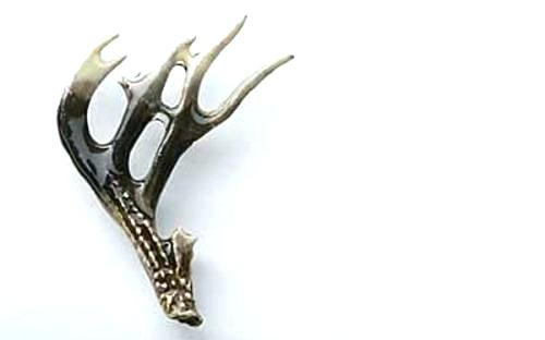 500x312 Whitetail Deer Clip Art Whitetail Deer Free Download Clip Art Free