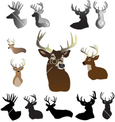 380x400 Whitetail Deer Head Clipart