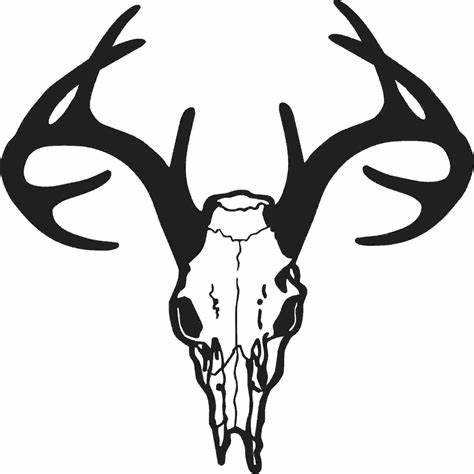 474x474 Whitetail Deer Head Vector. Whitetail Deer Head Vector Clipart