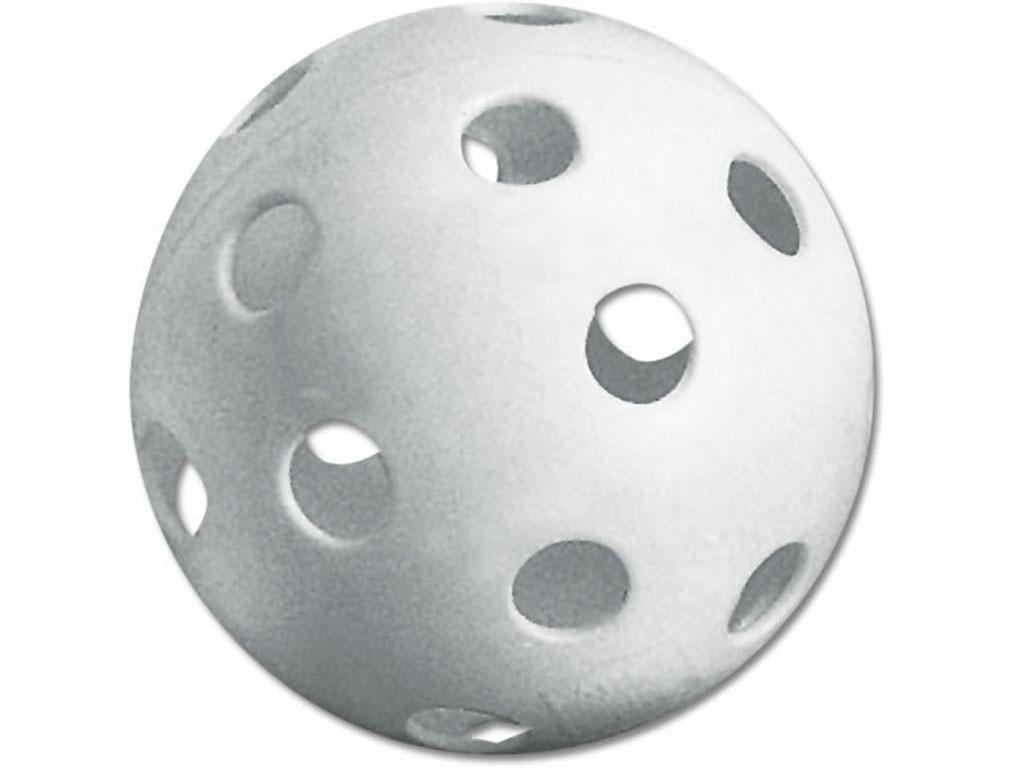 1024x768 Seamless Pickle Ball