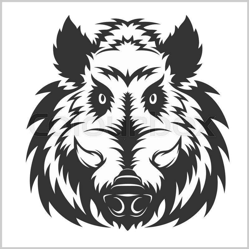 800x800 Wild Boar Head Logo Mascot Emblem