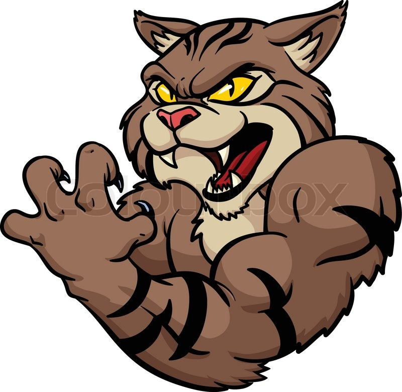 800x780 Fierce Looking Wildcat Mascot. Vector Illustration. All In A