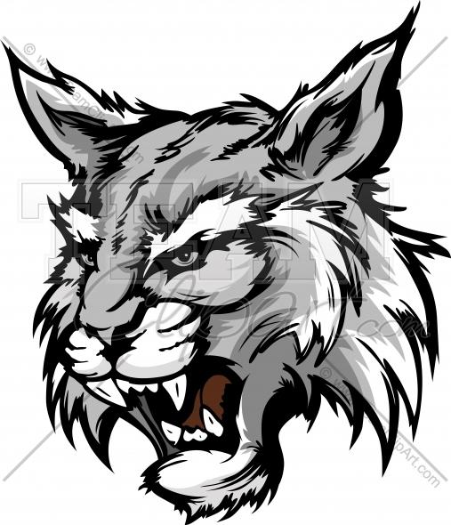 507x590 Wildcat Mascot Head Graphic Vector Illustration