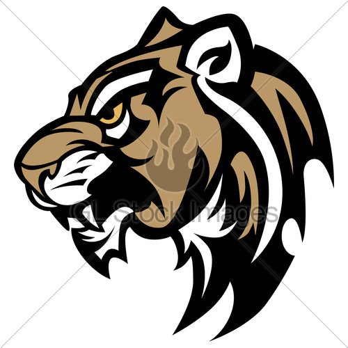 500x500 Cougar Panther Wildcat Mascot Head Vector Graphic Gl Stock Images