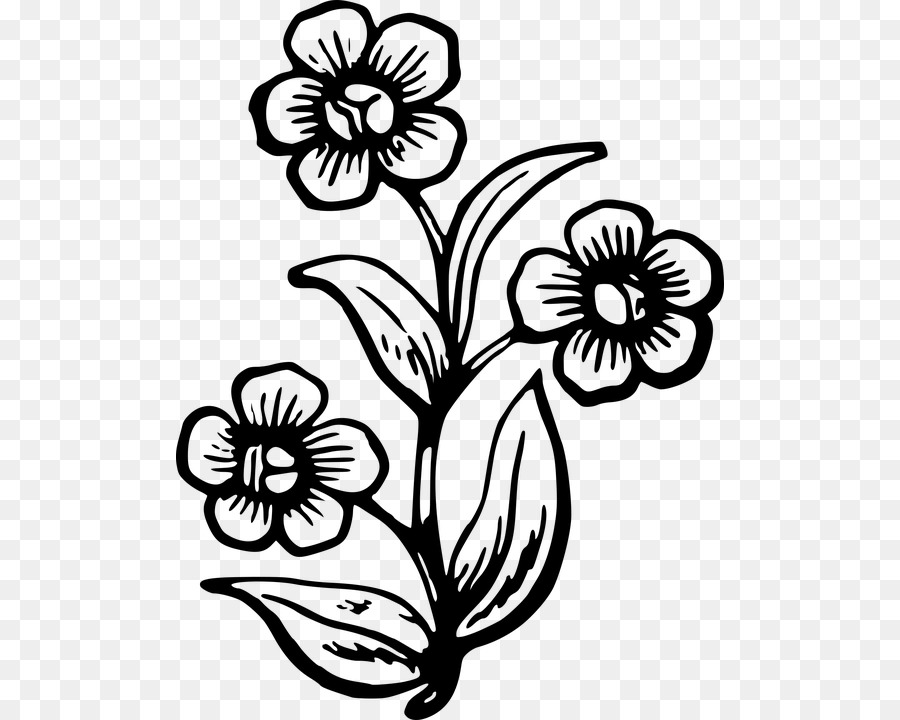 900x720 Drawing Stencil Clip Art Image Wildflower