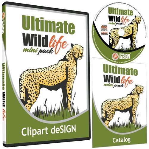 500x500 Wildlifeanimals Clipart Vinyl Cutter Plotter Clip Art