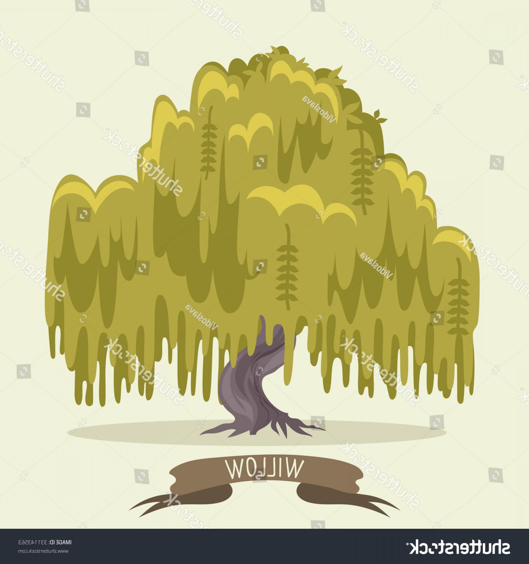 1800x1920 Green Willow Tree Vector Illustration Geekchicpro