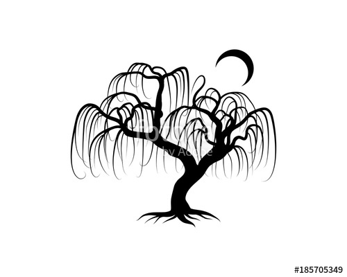 500x400 Line Art Black Willow Tree With Moon Hand Drawing Logo Silhouette