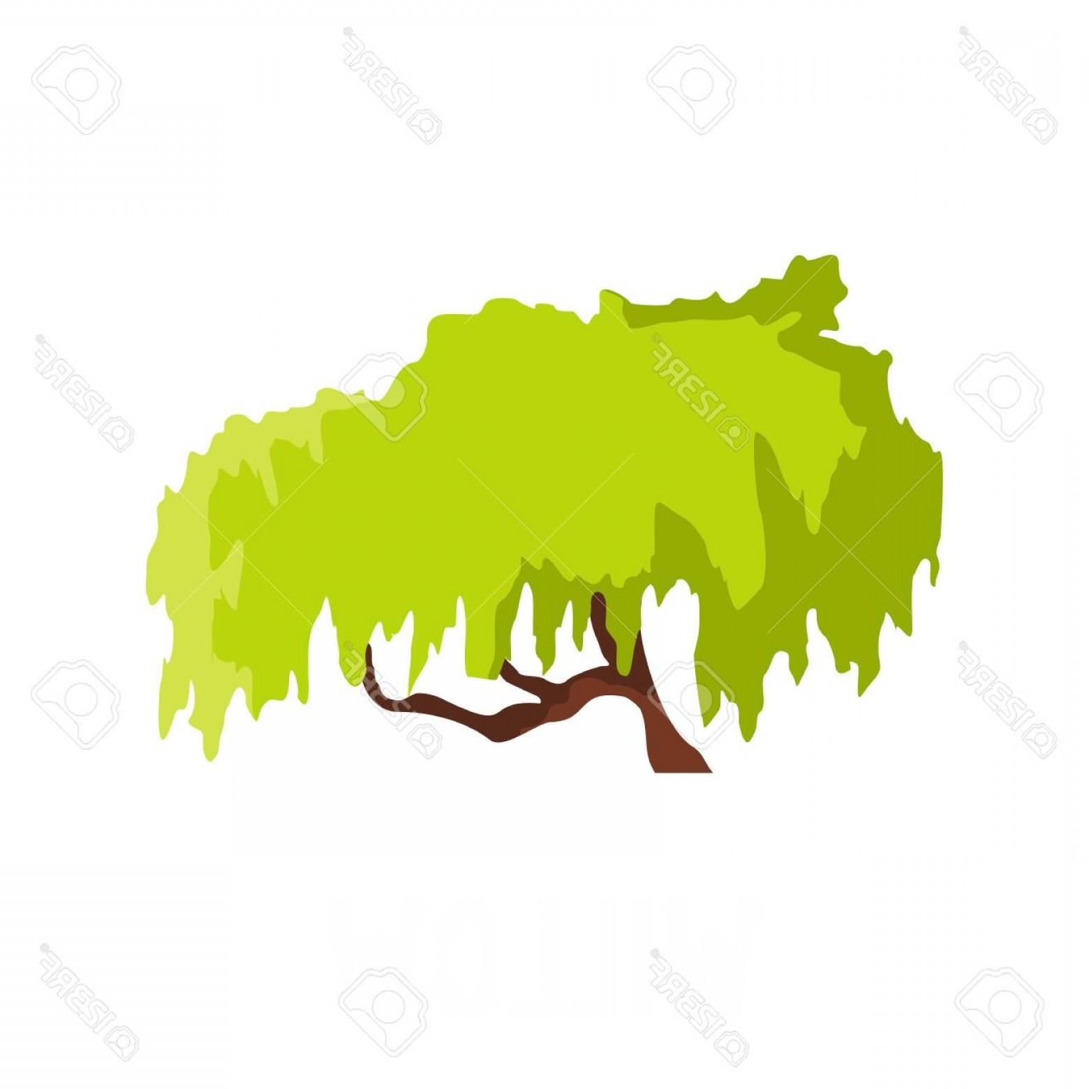 1560x1560 Photostock Vector Willow Tree Icon Flat Illustration Of Willow