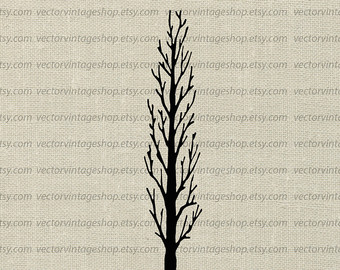 340x270 Weeping Willow Tree Vector Clipart Bare Tree Silhouette Clip Etsy
