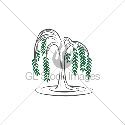 500x500 Willow Tree Gl Stock Images