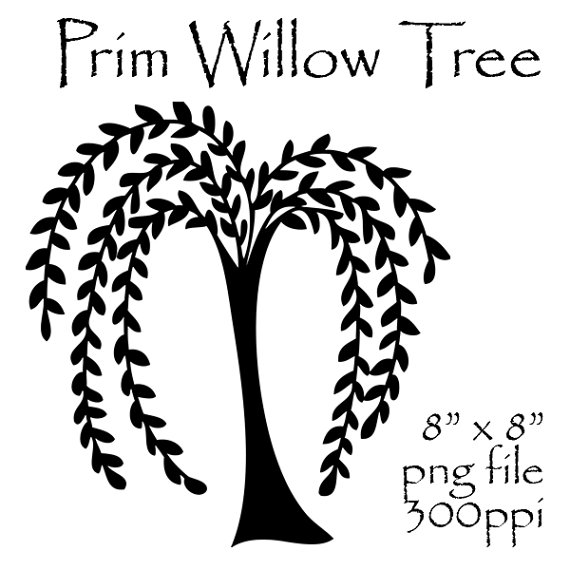 570x570 Willow Tree Clipart