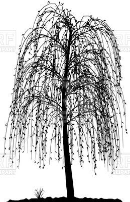 259x400 High Detailed Willow Tree Silhouette Vector Image Vector Artwork