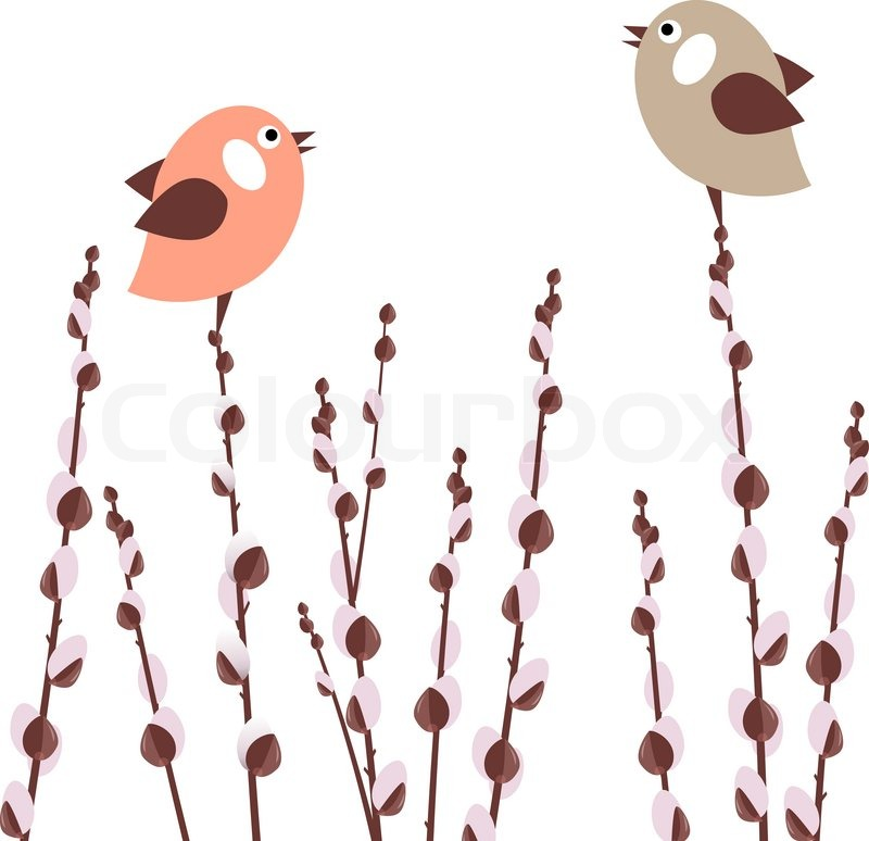 800x774 Pussy Willow Branches With Small Stylized Birds Stock Vector