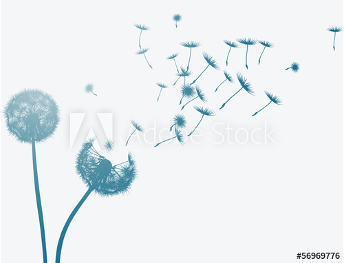 500x382 Dandelion In The Wind. Vector Background.