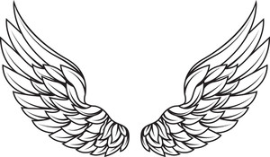 300x175 Vector Wings Royalty Free Stock Image