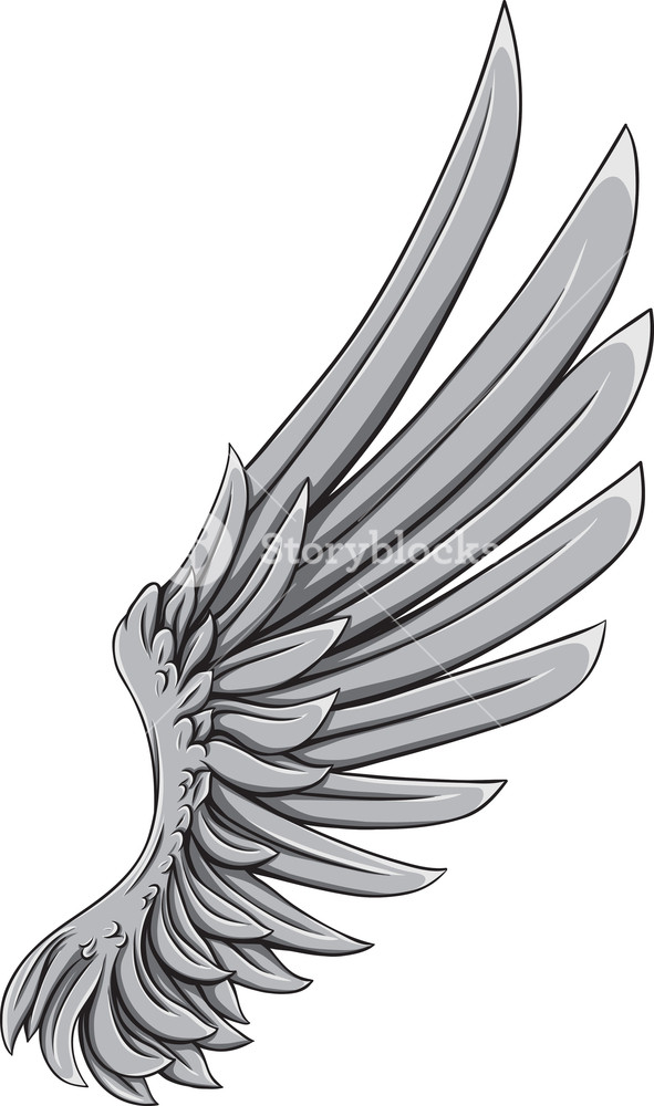 591x1000 Wings Vector Element Royalty Free Stock Image