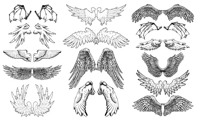 645x395 Hand Drawn Wings Vector Pack For Adobe Illustrator
