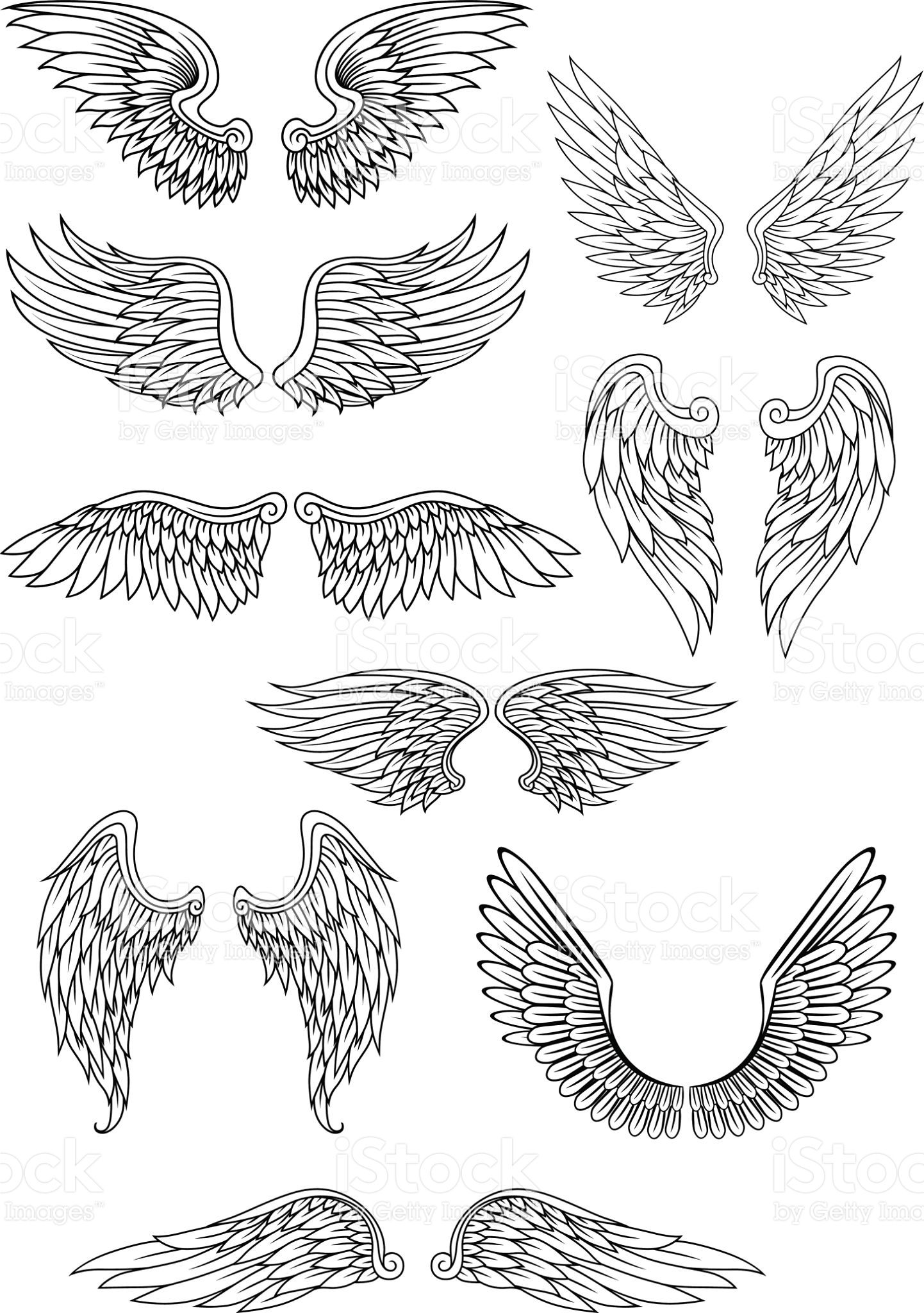 1442x2048 Heraldic Bird Or Angel Wings Set Isolated On White For Religious
