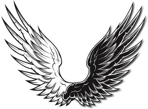 493x364 Free Wings Graphics Freebies In Adobe Illustrator Eps And Ai
