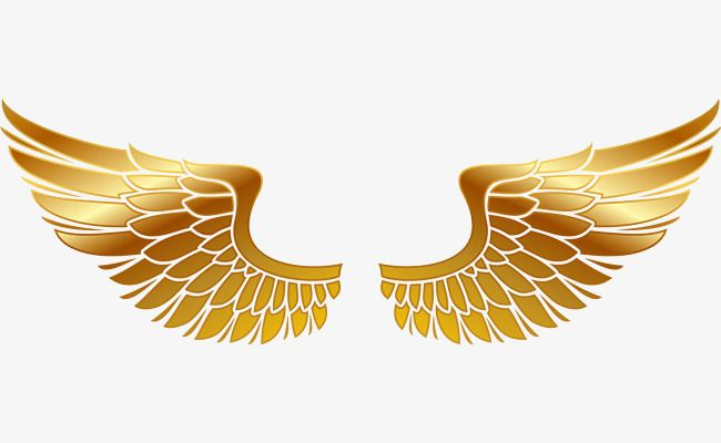 650x400 Golden Wings,hand Painted,golden,vector Material,wings Vector,png