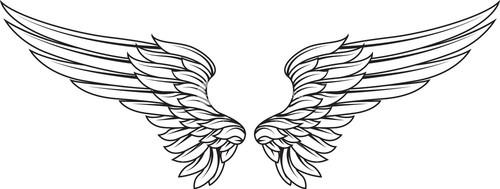 500x189 Vector Wings