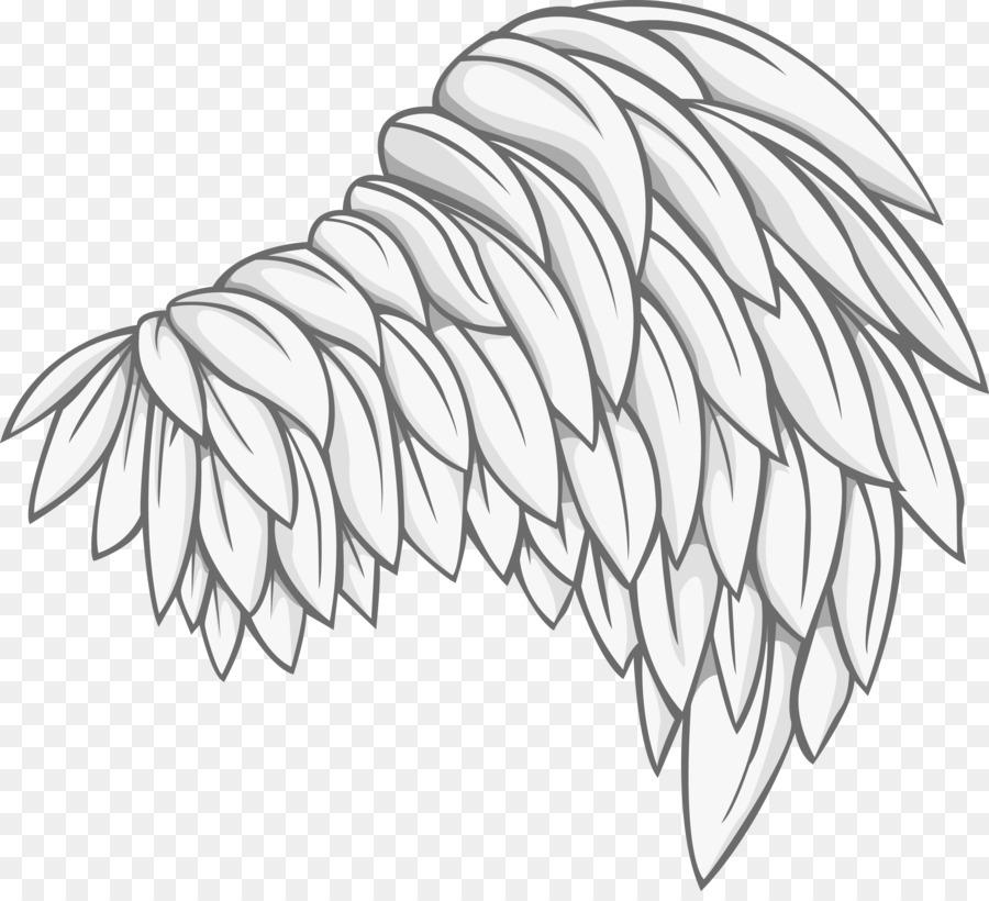 900x820 Bird Photography Drawing Illustration