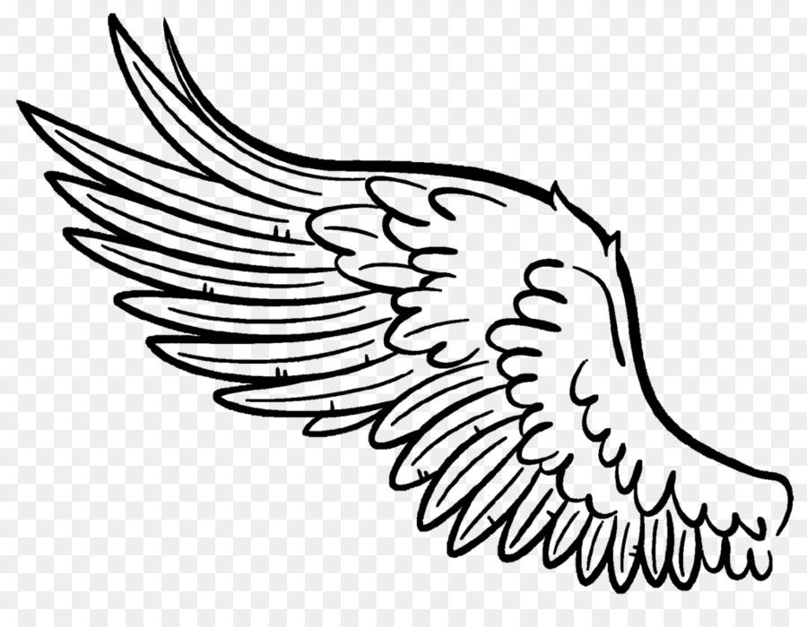 900x700 Buffalo Wing Drawing Art Clip Art