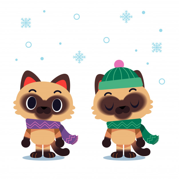 626x626 Cat Characters Wearing Scarf And Winter Hat Vector Premium Download