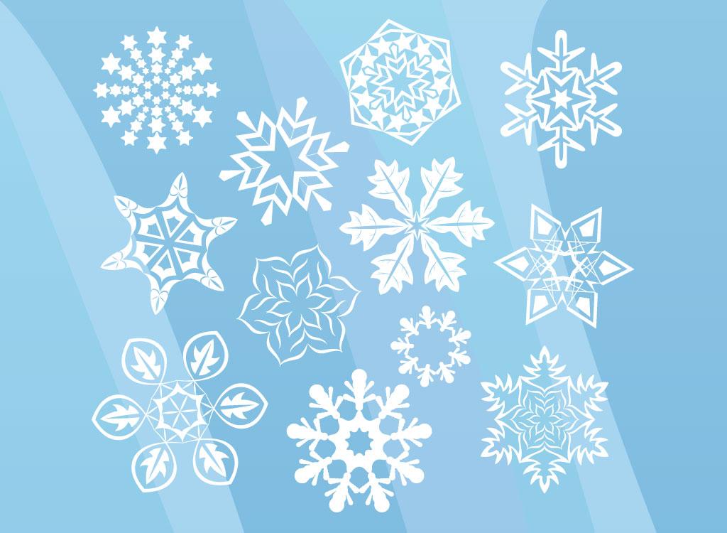 1024x750 Winter Snow Flowers