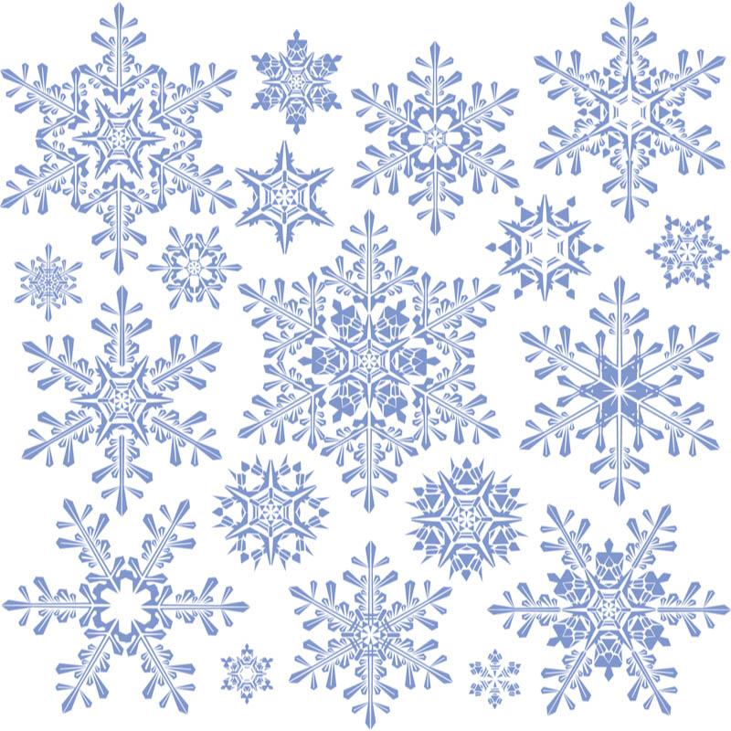 800x800 Free Snowflake Vector