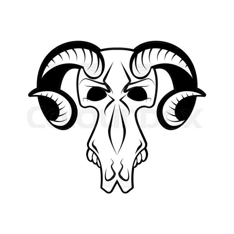 800x800 Ram Skull Isolated. Religion Totem Animal Symbol. Object For