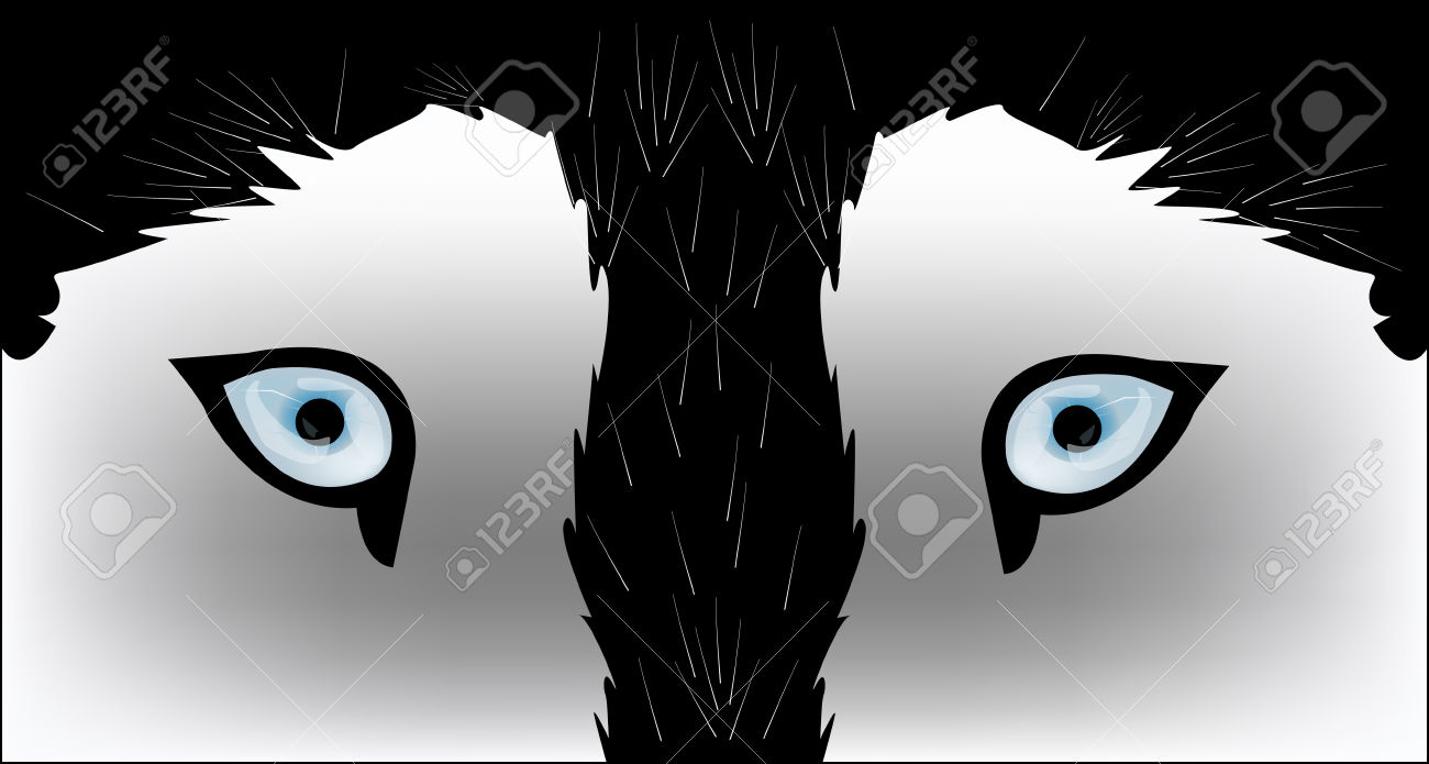 1300x695 Husky Clipart Wolf Eyes Free Collection Download And Share Husky