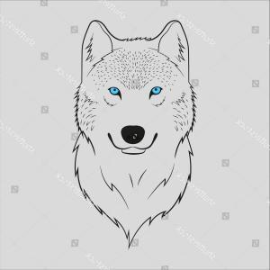 300x300 White Wolf Blue Eyes Vector Orangiausa