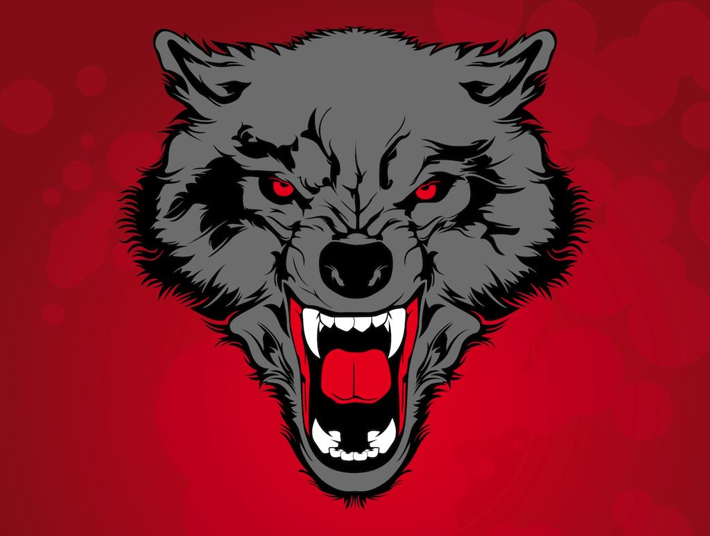 1024x773 Wild Wolf Vector Art Amp Graphics