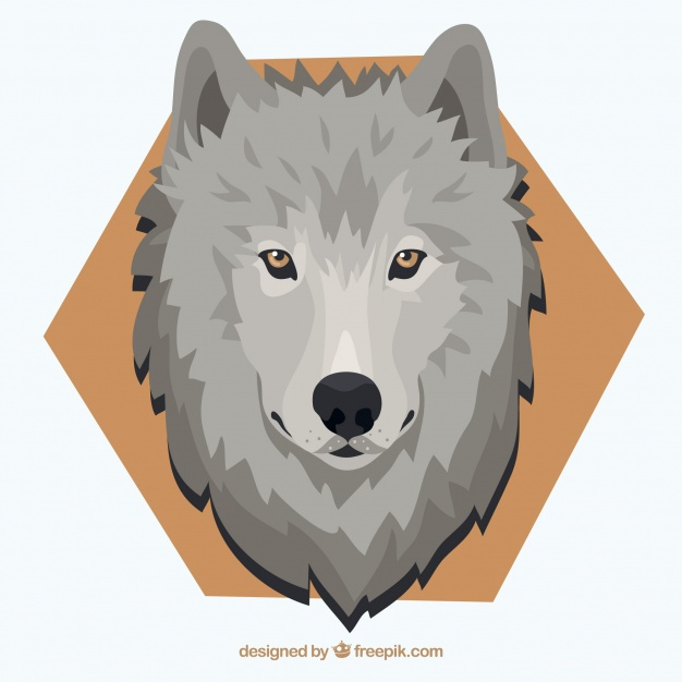 626x626 Wolf Background With Yellow Eyes And Hexagon Vector Free Download