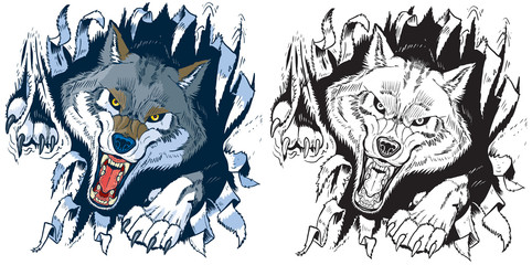 482x240 Wolf Photos, Royalty Free Images, Graphics, Vectors Amp Videos
