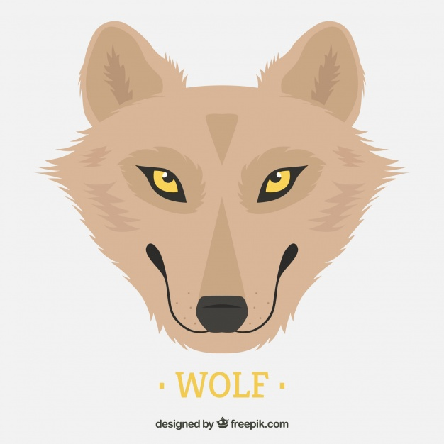 626x626 Background Of Pretty Wolf With Yellow Eyes Vector Free Download