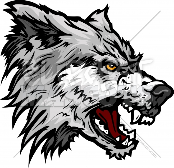 590x571 Illistration Clipart Wolf Head