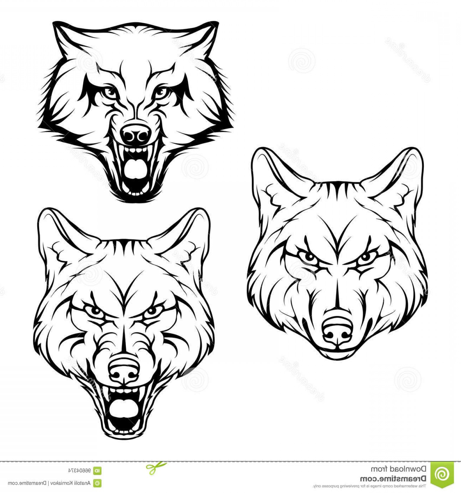 1560x1668 Stock Illustration Wolf Set Vector Sketch Business Sign Logotype